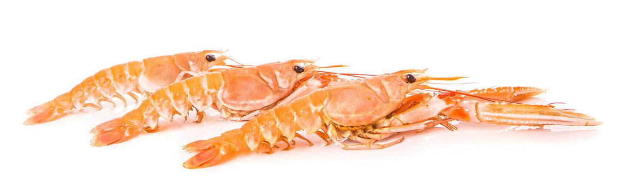 seafood-laks5